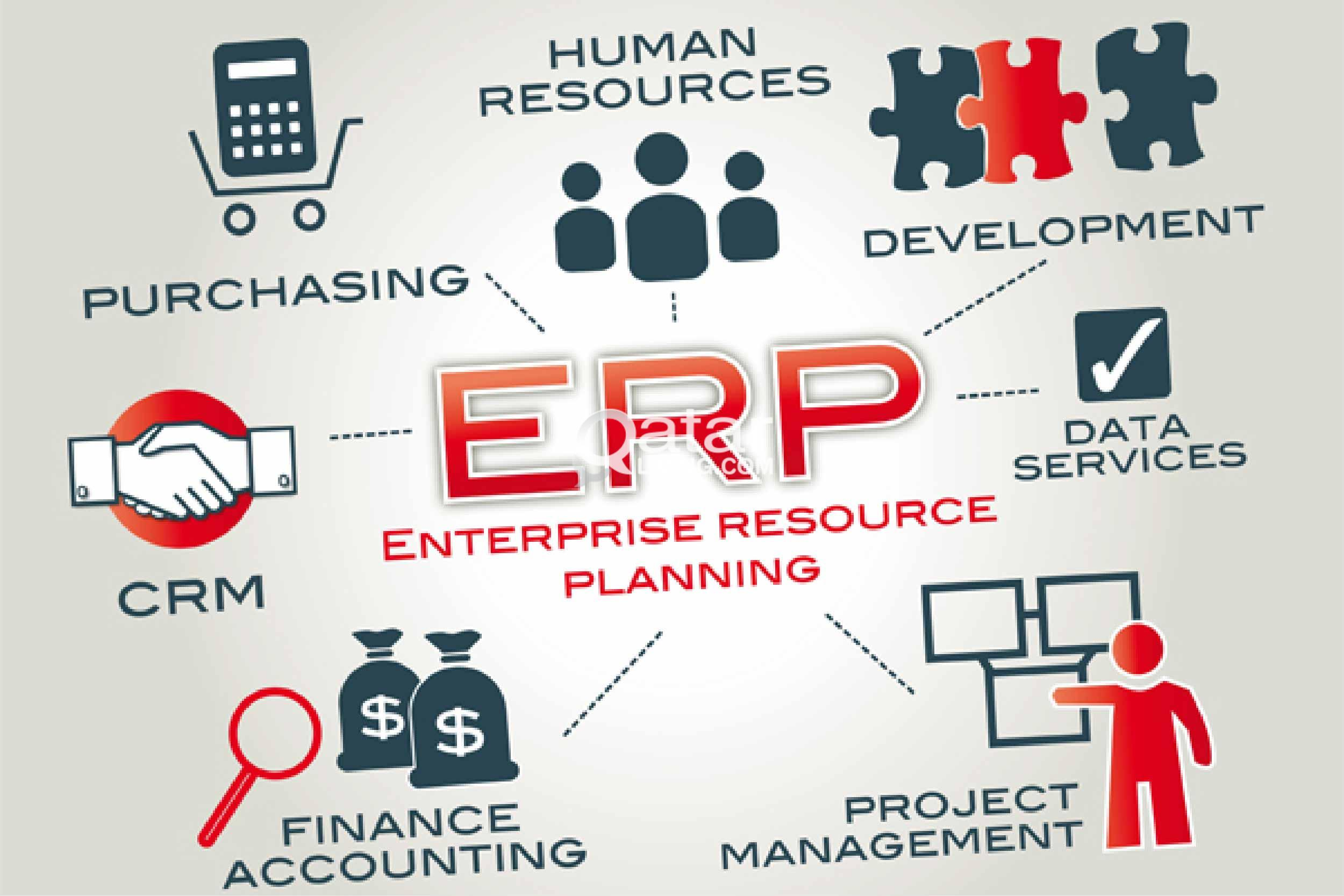 How Can You Walk Through the Road to Success With ERP Software
