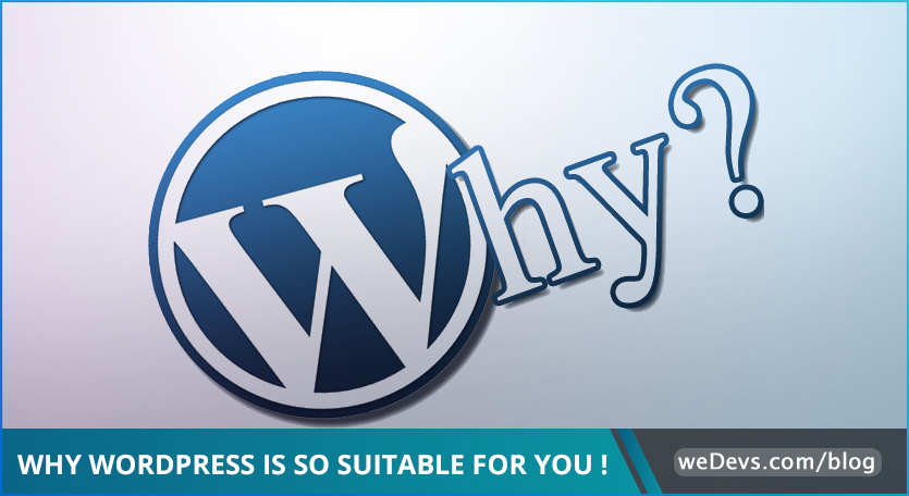 How much does it cost to create a business website with WordPress